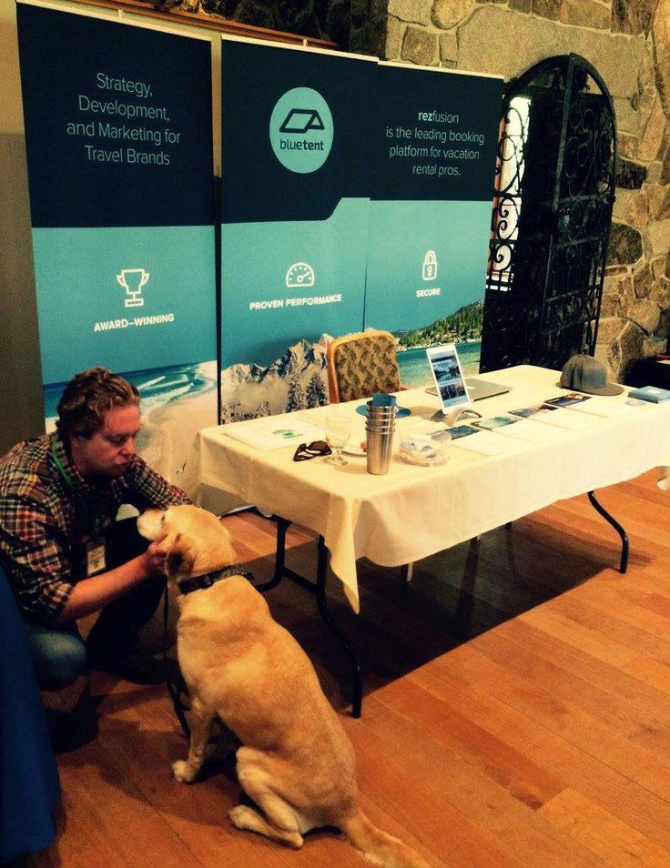 Joe Joyce is meeting and greeting the local pups at Sleeping Lady Mountain Resort for #VRMAWA