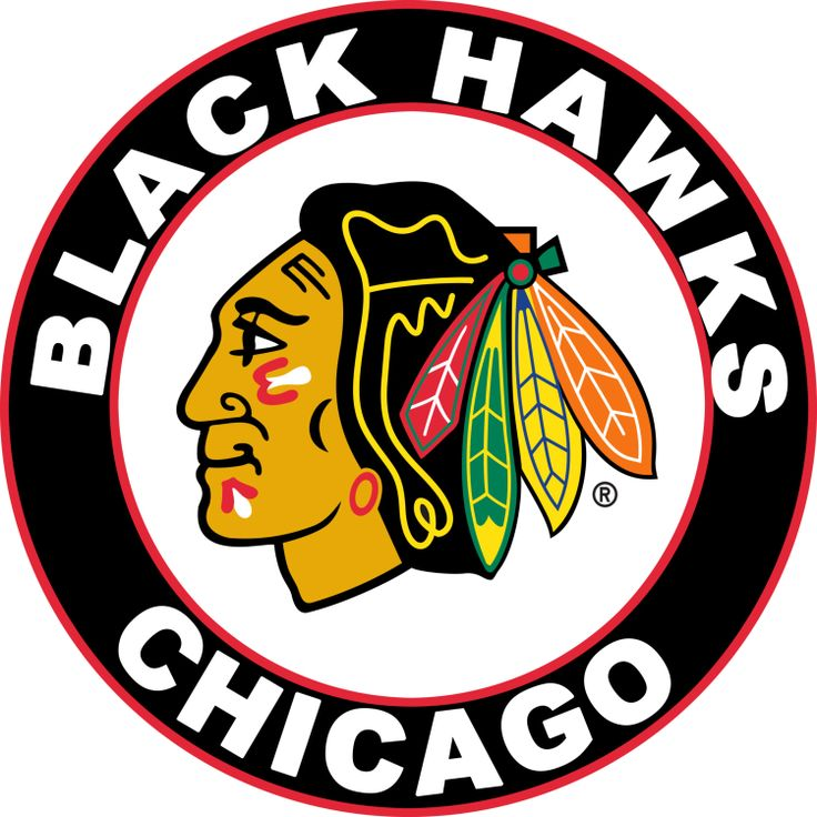 https://s-media-cache-ak0.pinimg.com/736x/72/ea/ec/72eaec034849733c3e21c6e797b61cce--the-blackhawks-blackhawks-tickets.jpg