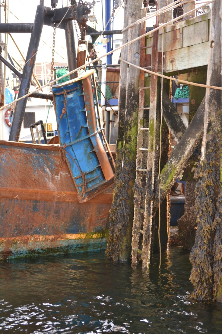153 best images about commercial fishing on pinterest for Mass commercial fishing