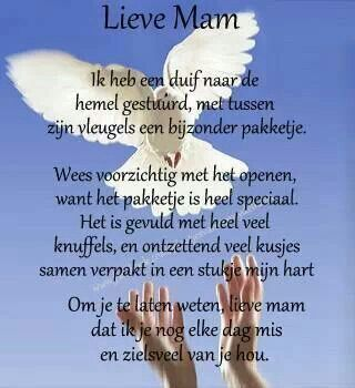 For my loved ones in heaven - Voor mijn dierbaren in de hemel