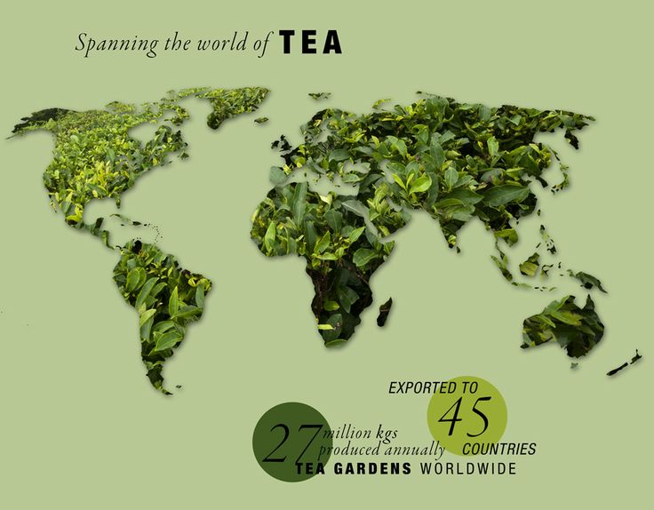Buy World's Finest #Darjeeling & #Assam #Tea in Bulk From India's Second Largest Tea Producer - Jay Shree Tea. Get Exlcusive Price Quotes @ http://bit.ly/2fuZxUb