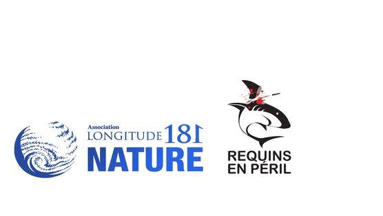 A Monsieur le Ministre de l'Agriculture : Interdisez le commerce et l'exportation des produits de la pêche des requins en France. http://www.change.org/petitions/a-monsieur-le-ministre-de-l-agriculture-interdisez-le-commerce-et-l-exportation-des-produits-de-la-p%C3%AAche-des-requins-en-france #SeaShepherd #defendconserveprotect