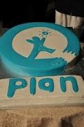 Plan Pakistan cake