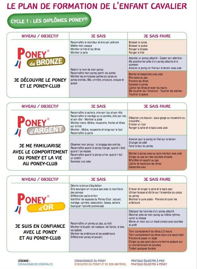 Populaire Les 118 meilleures images du tableau Fiches poneys sur Pinterest  CK69