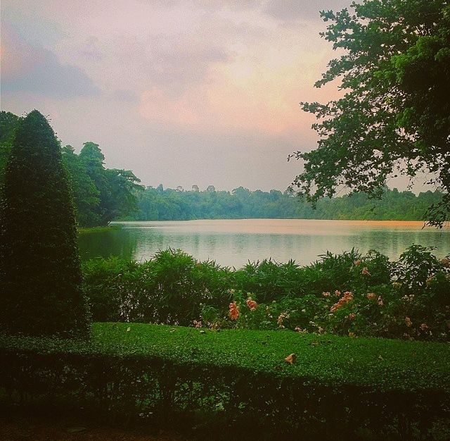 The view of the lake from the garden at Singapore Zoo.  Source: Geline Lim (geline_yuhan) Instagram account