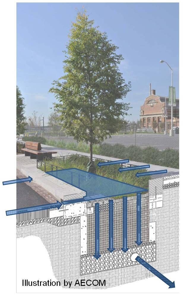 bioretention facility schematic