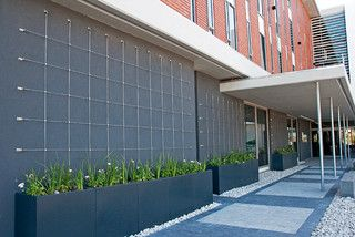 Green Wall Trellises - modern - outdoor products - other metro - by Tensile Cables