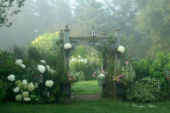 TOP 10 des plantes et fleurs pour un jardin romantique et bucolique à souhait ! -