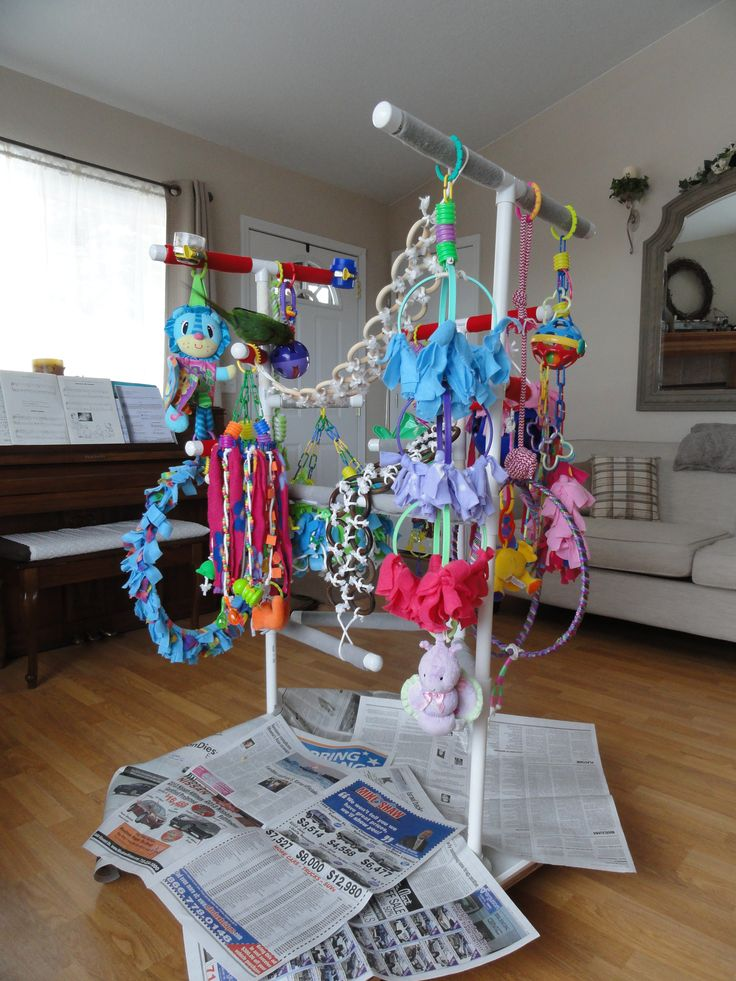 15 best images about pvc playstands on pinterest pvc for How to build a bird stand
