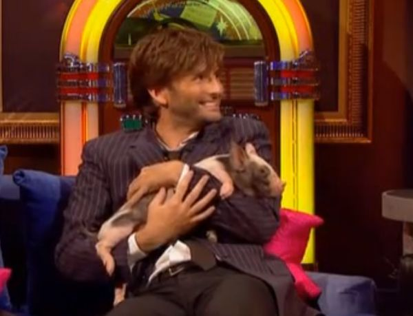 Paul O'Grady is still waiting for David Tennant to give him his trousers back !! Paul, presenter of 'For the love of dogs' had to lend David, star of the hugely successfully drama Broadchurch, a pair of trousers after a micro pig weed on him when they appeared on Paul's show, The Paul O'Grady show in October 2010. He exclusively told B...