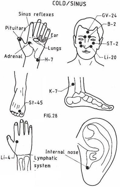 Acupressure for Colds or sinus problems | Acupressure ...