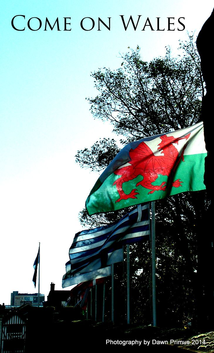 Welsh rugby team - go Wales!