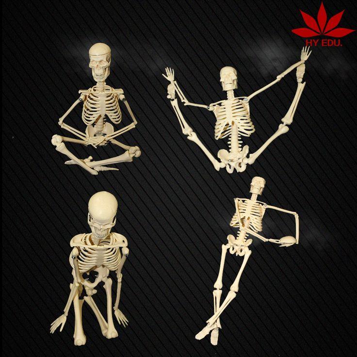 Office and school supplies 45cm human skeleton model teaching aid  mini skeleton #Affiliate