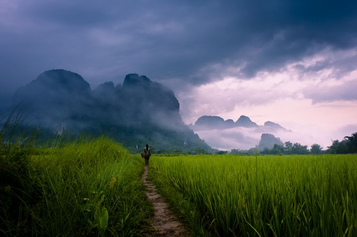 Path to Wonder by Dan Ballard on 500px