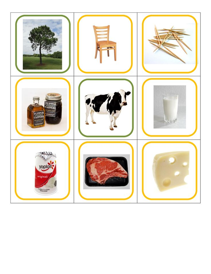 Natural resource activity cardspdf natural resources