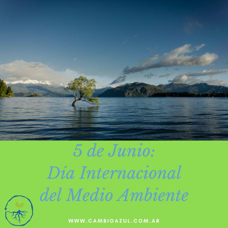 5 de Junio: Día Internacional del Medio Ambiente: El Día Mundial del Medio Ambiente, conmemorado cada año el 5 de junio, es uno de los vehículos principales por medio de los cuales la Organización de las Naciones Unidas fomenta una alerta mundial sobre el medio ambiente e incrementa la atención y acción política.