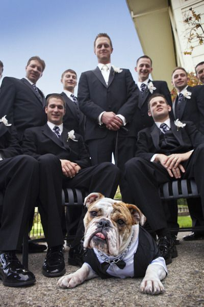 Yayy!  Now I know how I can include my dog on my wedding day.  Can't wait