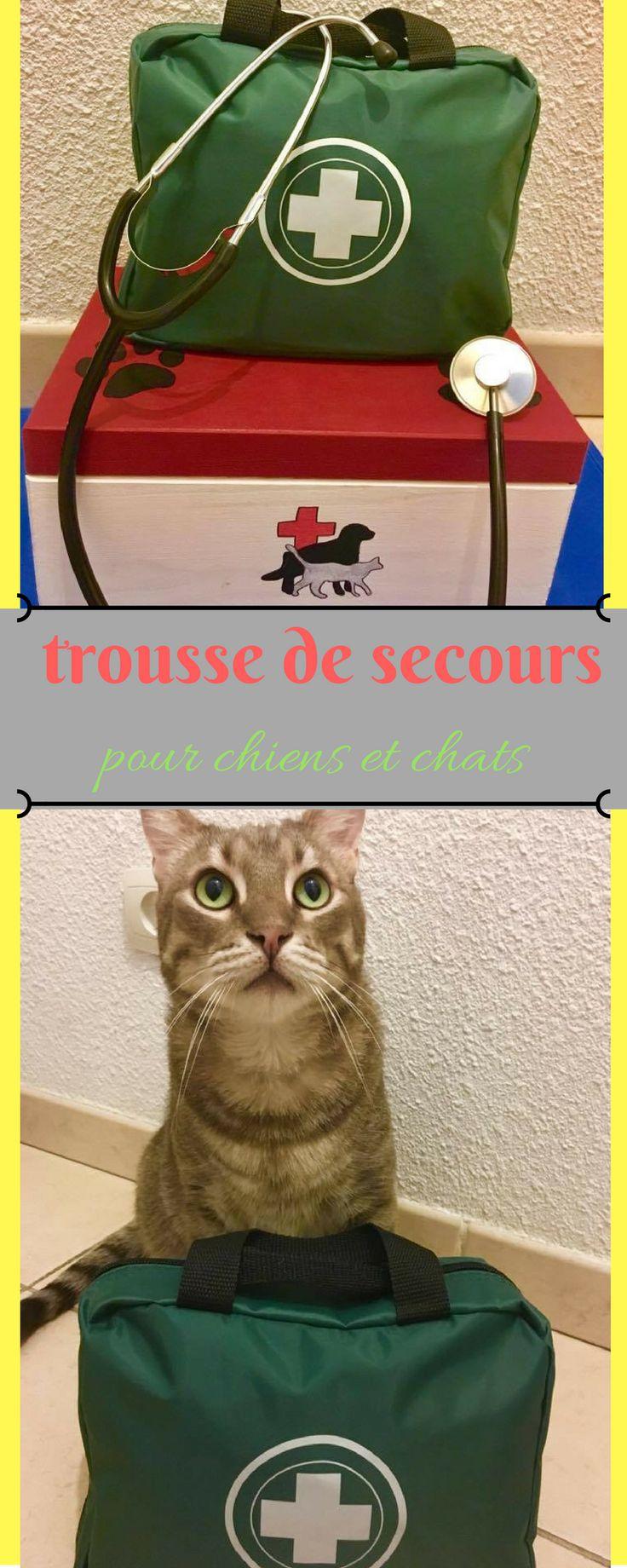 Guide pour préparer sa trousse de secours complète pour son animal + en bonus les indispensables de la pharmacie naturelle