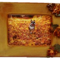 Fall Frame with Leaf Bisquies