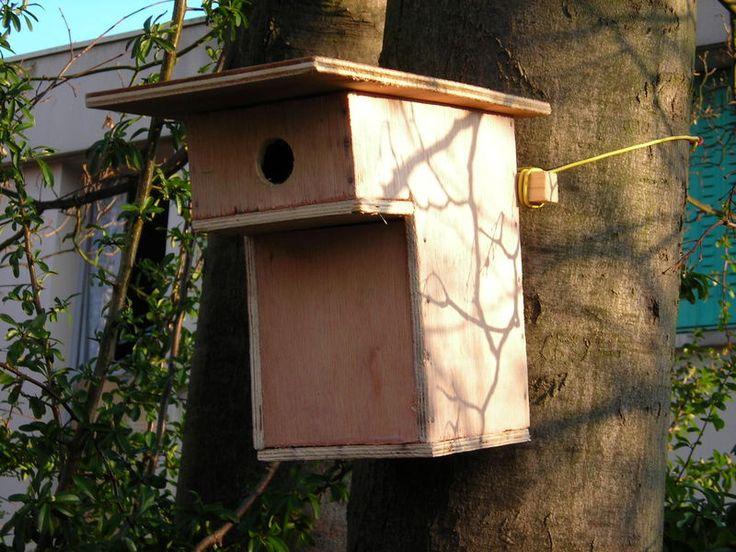 """il existe de nombreux plans de nichoirs pour toute sorte d'oiseau... ici un nichoir à mésanges bleues, avec un trou de 28mm et une protection """"anti chat""""."""