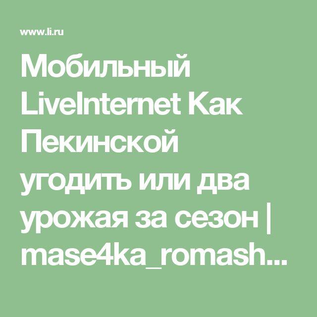 Мобильный LiveInternet Как Пекинской угодить или два урожая за сезон | mase4ka_romashka - Рукодельное и полезное  mase4ka_romashka |