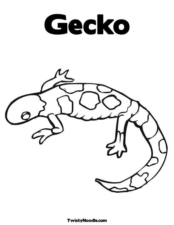 10 Pics of Leopard Gecko Coloring Pages Printable