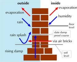 Damp proofing your walls
