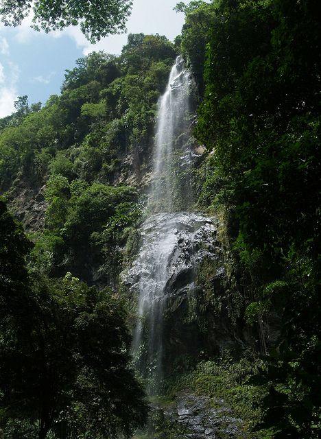 Waterfalls In Trinidad   Maracas Waterfall