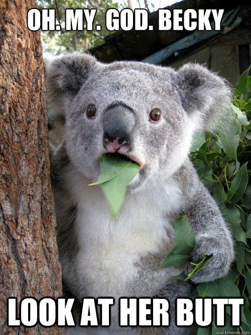 It is SO big!Memes,  Phascolarcto Cinereus,  Native Bears, Funny Stuff, Koala Bears, Humor,  Koalas Bears, Funny Animal,  Kangaroos Bears