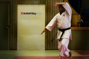 Differences Between Karate And Kung Fu