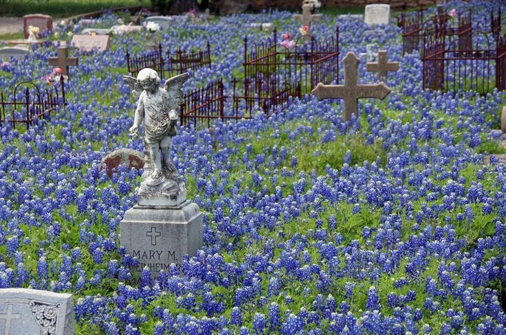 St. Mary's Catholic Cemetery in Fredericksburg, Texas