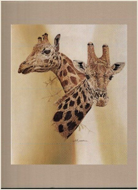 The Giraffes Phil Prentice Rare Vintage Print W Mat Ready