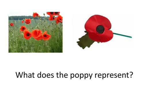 lesson 9 Flanders Fields.ppt