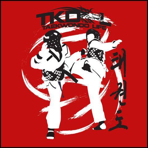 SPIN KICKS! - Taekwondo T-Shirt - Bold Graphic!- AST - Rhino Junction Apparel - 1