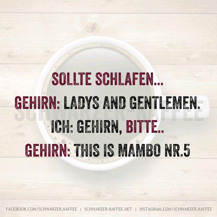 Sollte schlafen… Gehirn: Ladys and Gentlemen. Ich: Gehirn, Bitte.. Gehirn: This is Mambo Nr.5