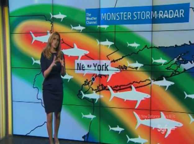 "This weather expert had shark chyrons ready to go. | The 38 Most Absolutely Absurd Things That Happen In ""Sharknado 2"""