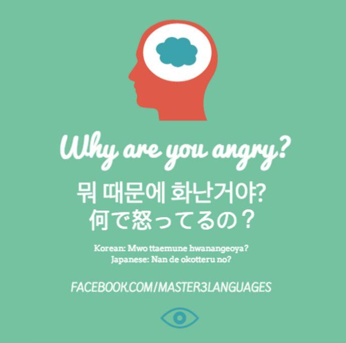'Why are you angry?' in Korean & Japanese  Master3Languages - Korean, Japanese, English  #korean #japanese #koreanspeaking #japanesespeaking #koreanphrase #japanesephrase #hangul #kana #kanji