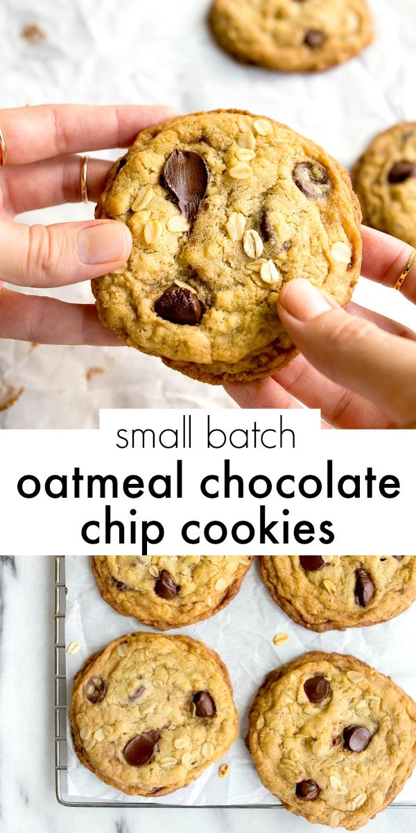 Small batch oatmeal chocolate chip cookies the perfect recipe for a small batch oatmeal chocolate chip cookies the perfect recipe for a half dozen of the softest and best small batch chewy oatmeal cookies around forumfinder Images