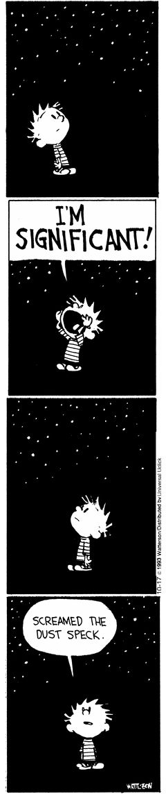 Calvin and Hobbes, STARS - I'm SIGNIFICANT! Screamed the dust speck. #Significance #StrengthsFinder www.virtuouscoaching.co.za