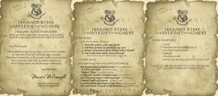 an adult harry potter party, invitations, class schedules, ,find the snitch, class ideas