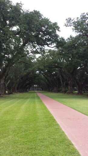 Oak Alley Plantation Interview With A Vampire 204 best images about ...