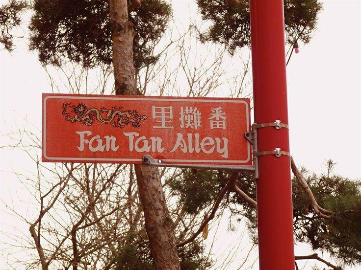~Shannon Brockhurst 2014 Fan Tan Alley, Victoria Chinatown, BC Canada