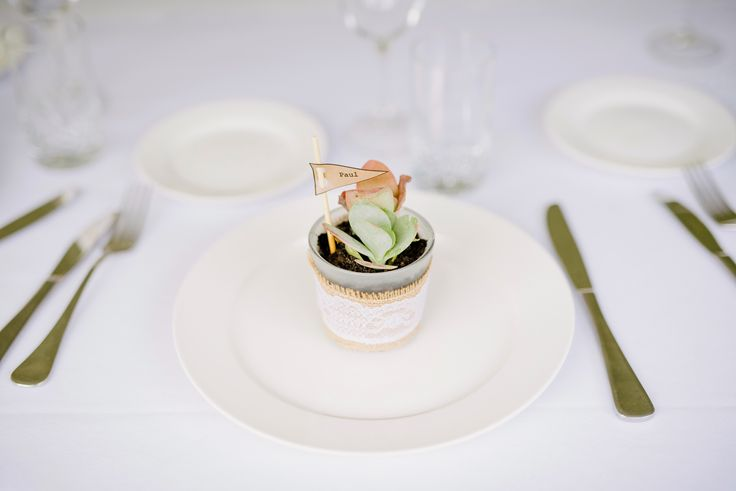 Table Settings. Succulent wedding favour doubled up as a table place card. Subtle, simple, brilliant (if I may say so myself).