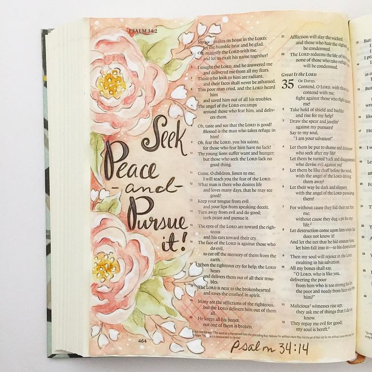 """Melissa Fischer (@fischtales) on Instagram: """"""""Turn away from evil and do good; seek peace and pursue it""""- Psalm 34:14 The flower, on this page,…"""""""