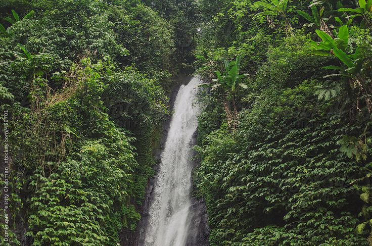 Close up of Munduk Waterfall by DominiqueFelicityPhotography | Stocksy United