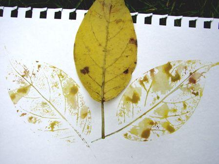 Botany! Watercolorleaf Prints -