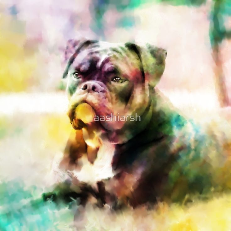 #Bulldog #Painting #Colorful #Art #framed #print design available on many other products. Check it.