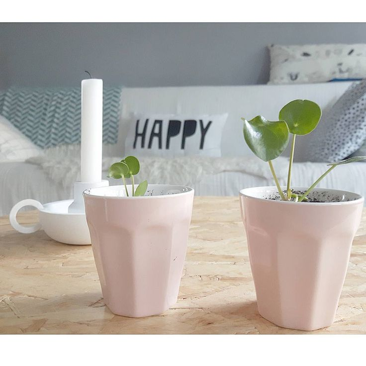 25 beste idee n over beker decoratie op pinterest for Kartonnen bekers hema