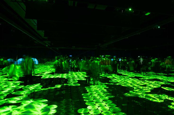Japan Pavilion at Expo Milano 2015, design by TeamLab  #ExpoMilano #Intralighting