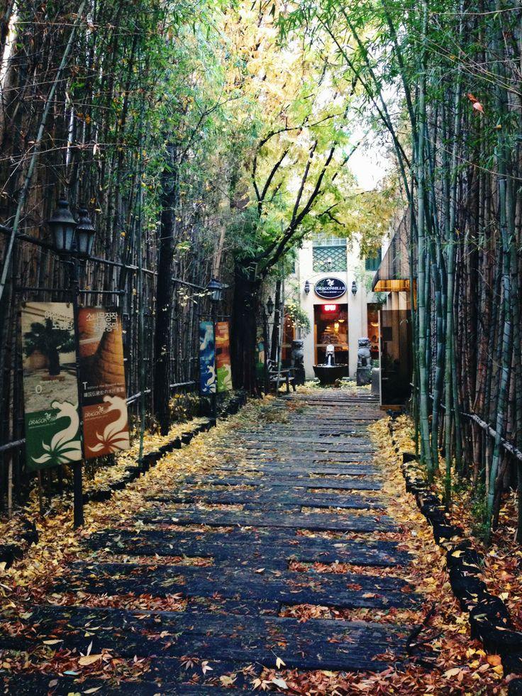 Dragon Hill Spa! Best spa in Seoul!!